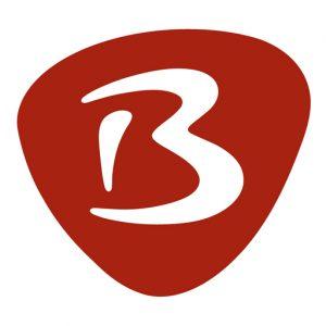 Bibelkurs Logo